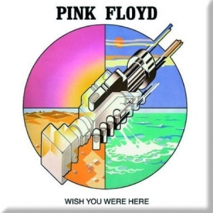 Pink Floyd - Wish you were here graphic in the group OTHER / Merch Popular at Bengans Skivbutik AB (1556202)