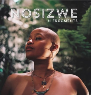 Nosizwe - In Fragments in the group VINYL / Upcoming releases / RNB, Disco & Soul at Bengans Skivbutik AB (2113478)