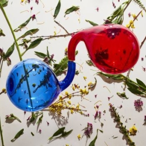 Dirty Projectors - Lamp Lit Prose (Red Or Blue Vinyl) in the group Campaigns / Way Out West / Old Wow at Bengans Skivbutik AB (3250669)