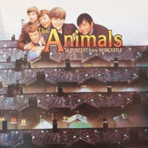 Animals - In Concert From Newcastle 1963 in the group CD / Rock at Bengans Skivbutik AB (3264665)