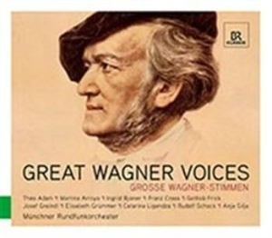 Wagner - Great Wagner Voices in the group CD / Klassiskt at Bengans Skivbutik AB (587779)
