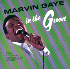 Gaye Marvin - In The Groove (Vinyl)
