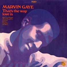 Gaye Marvin - That's The Way Love Is (Vinyl)