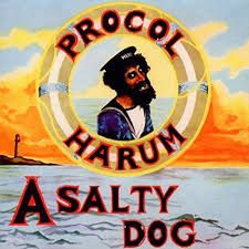 Procol Harum - A Salty Dog in the group VINYL / New releases - import / Rock at Bengans Skivbutik AB (2463501)