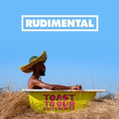 Rudimental - Toast To Our Differences (Viny