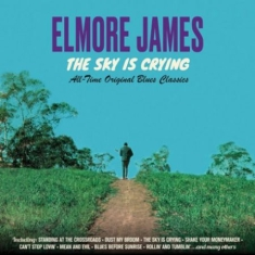 Elmore James - Sky is Crying