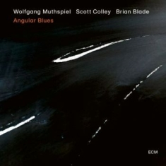 Muthspiel, Wolfgang; Colley, Scott; - Angular Blues