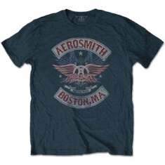 Aerosmith - Aerosmith Unisex Tee: Boston Pride
