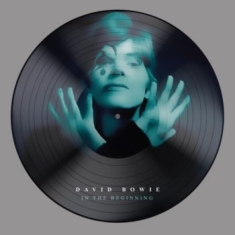 Bowie David - In The Beginning (Picture Disc)