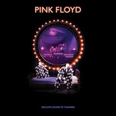 Pink Floyd - Delicate Sound Of Thunder (2Cd