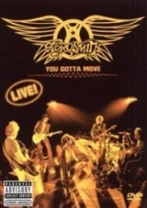 Aerosmith - You Gotta Move (A&E